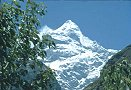 Neelkanth Peak as seen from Sri Badrinath